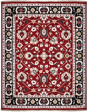 rug cleaning service and cleaner