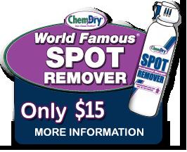Spot Remover
